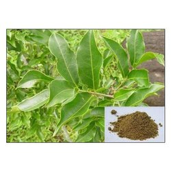 Salacia Reticulata Extract Upto 20% Saponin