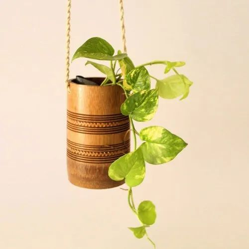 Brown Cylindrical 6 Inch Vertical Hanging Bamboo Planter