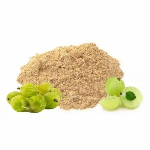 Amla Fruit Extract, Packaging Type: Bag