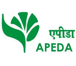 IOPEPC APEDA Certification Consultancy