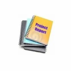 Leather Project Report Consultancy