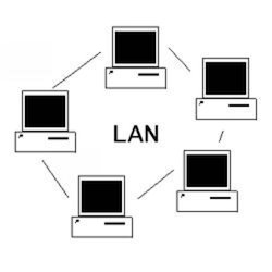 LAN Networking Services in Nagpur