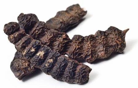 Shikakai Extract Acacia Concinna शककई Kshipra Biotech