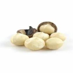 Macadamia Nut, Packing Size: 1 Kg