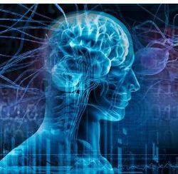 Vedic Neurology