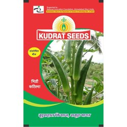 Kudrat Seeds Kudrat Lady Finger Seed, Packaging Size: 1 Kg, For For Agriculture