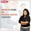 私人有限公司所得税填报