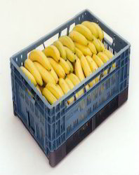 Fruits Perforated Crates