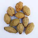 Malabar Neem Treated Seed