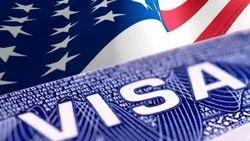 Fresh Tourist Visit Visa & Passport Service, 10101001, 1010100