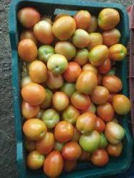 A Grade Red Fresh Tomato, Packaging Size: 20 Kg