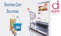 Social Media Marketing Online Advertising Services in Pan India
