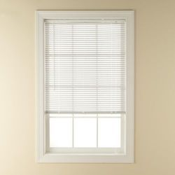 Vinyl Window Blind