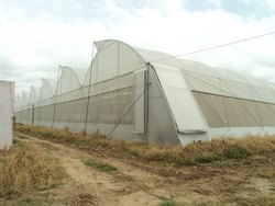 Multispan Agricultural Greenhouse