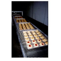Industrial Ovens Conveyor