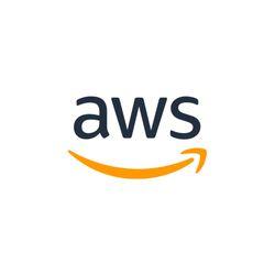 AWS Support Development Services
