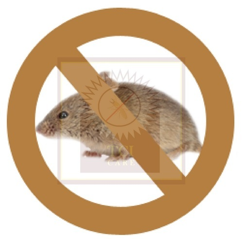 Rodent Control Services Ahmedabad - TCI CARE in Ahmedabad