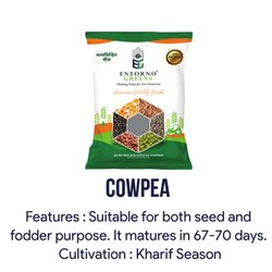 Entorno Greens Natural Cowpea Seeds, Packaging Type: Packet, Packaging Size: 2 Kg