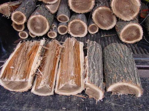 Brown Elm Firewood Chopra Company Id 18888238433