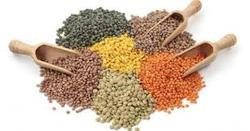 Indian Ermunai Dals & Pulses, High in Protein