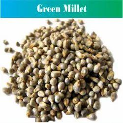 PJ Green Millet, Gluten Free