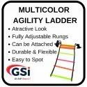 Multicolor Agility Ladder