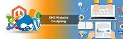 CMS Website Designing