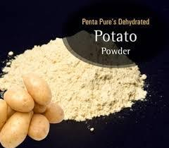 Potato & Onion Powder Project Reports