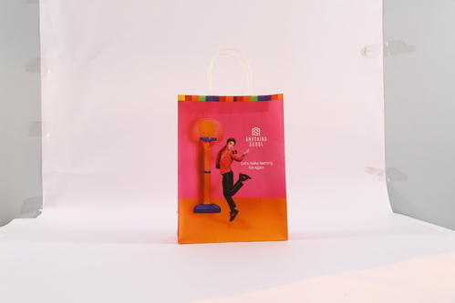 6ba14cb4f5 Paper Bags - Laminated Paper Shopping Bags Manufacturer from Bahadurgarh