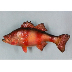 Grouper Fish, for Household, Packaging Type: Thermocol Box