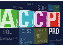 Aptech Certified Computer Professional Pro Course