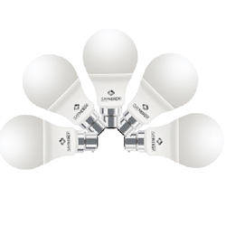 Cool Daylight 7 W Round LED Bulb
