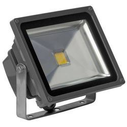 30W Cosmo Floodlight