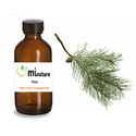 Global Supply of Top Selling Pine Essential Oil for Aromatherapy Massage