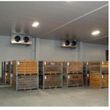 Fax Seeds Cold Storage Rental Services