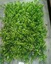 Hyperboles Artificial Vertical Garden