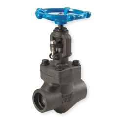 Forged Stainless Steel Globe Valve