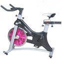 AF 295 Aerofit Spin Exercise Bike