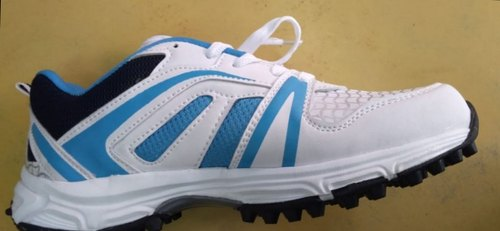 1c814eefc62c Pilot Sports Cricket Shoes