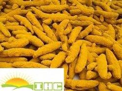 Curcuma Alleppey Finger TURMERIC, For Spices, Haldi