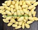 Blanched Peanuts - Ground Nut Kernel