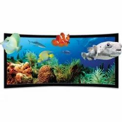 Curved Fix Frame Projection Screens