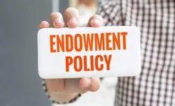 Endowmwent Insurance Plan