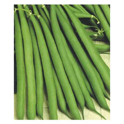 French Beans Seed, Pack Size: (100, 500, 1000) Gm