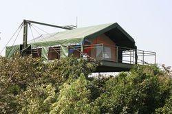 Executive All Weather Jungle Safari Tents