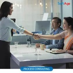 Process Consulting Service, Location: Pan India