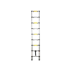 Silver Telescopic Ladder