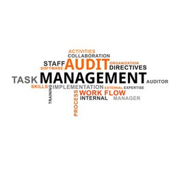 Consulting Firm Auditing Services