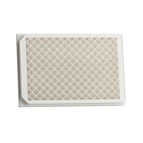 Borosilicate Glass White 96 Well PCR Plate
