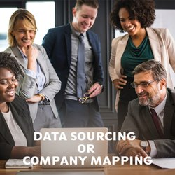 Data Sourcing or Company Mapping